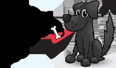 Hotel Laura Miramare accetta animali di piccola taglia